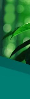 El tratamiento atopicheskogo de la dermatitis por la atutía